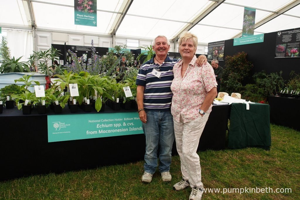 Linda Heywood and her husband Ray, with their National Collection of Echium species and cultivars from Macaronesian Islands, inside the Floral Marquee, at the RHS Hampton Court Palace Flower Show 2016.