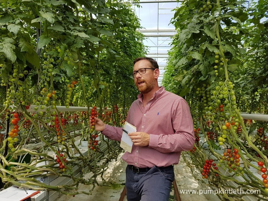 Paul Faulkner from Eric Wall Ltd gave the National Vegetable Society Members an interesting and informative tour of the glasshouses at Eric Wall Ltd's Barnham site, in Chichester, West Sussex.