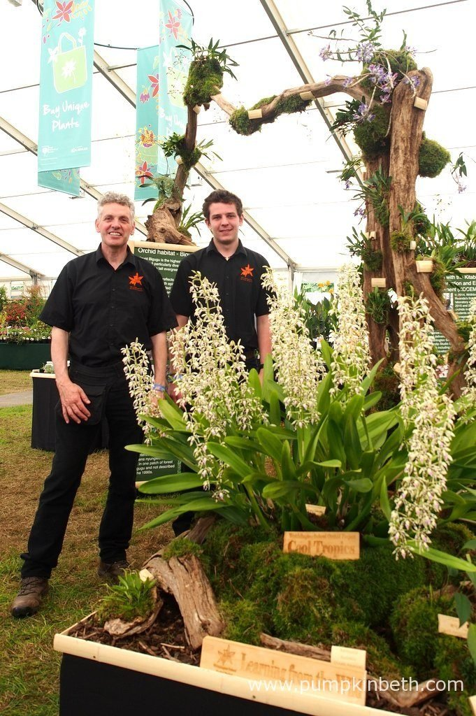Simon Pugh-Jones and Jacob Coles from the Writhlington Orchid Project, pictured with their Gold Medal winning orchid exhibit, which featured this orchid archway, at the RHS Hampton Court Palace Flower Show 2016.