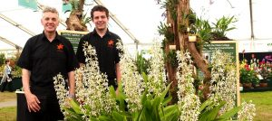 The Writhlington Orchid Project at the RHS Hampton Court Palace Flower Show 2016