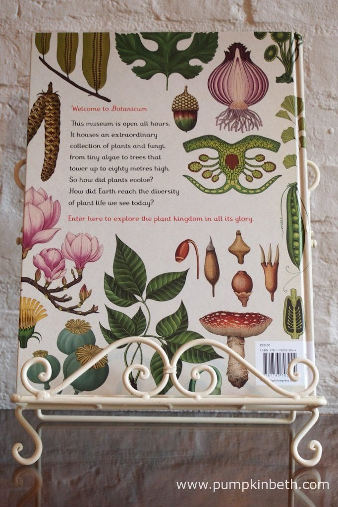 Botanicum is curated by Katie Scott and Kathy Willis, and Published by Big Picture Press/Bonnier Publishing.