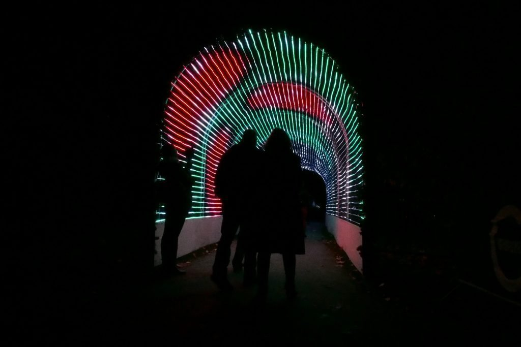 Visitors walking through the immersive light tunnel experience at the Christmas at Kew 2016 event, held at the Royal Botanic Gardens, Kew.