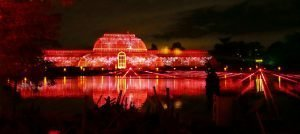 Christmas at Kew 2016