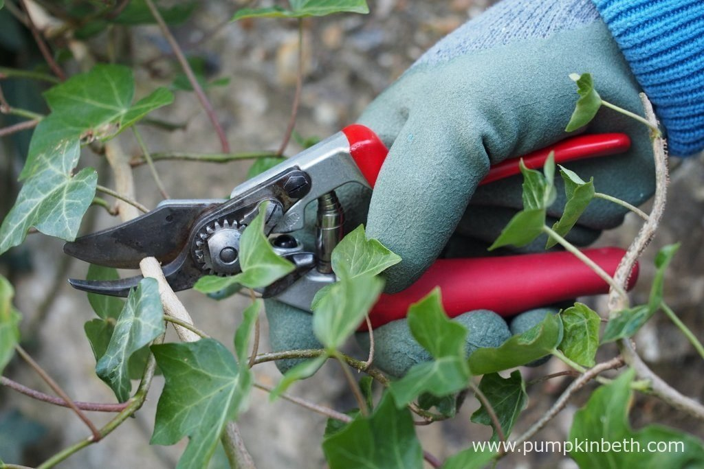 Felco Model no. 12 Compact Deluxe Secateurs are easy to use and effective. These secateurs would make a great gift for a keen gardener.