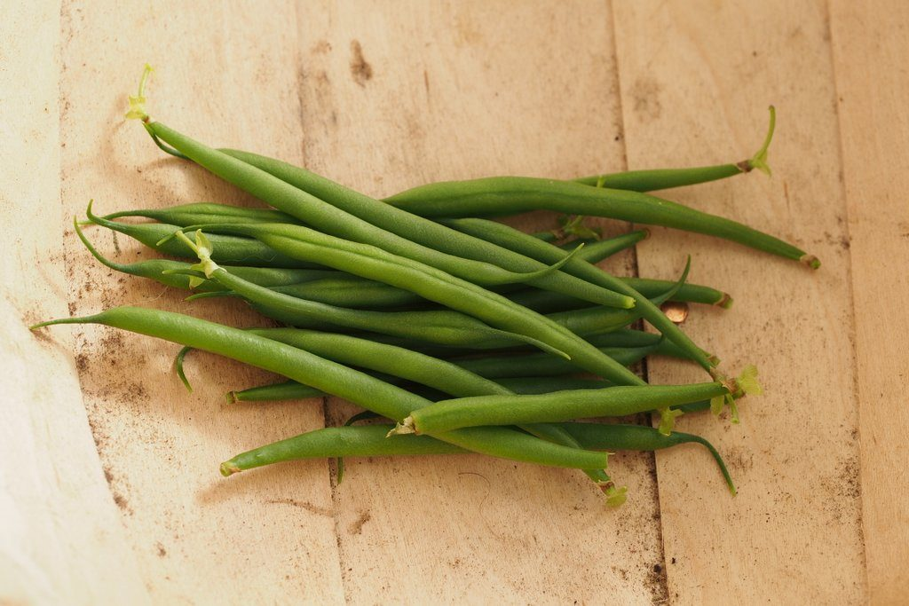 French beans harvested from plants grown in Westland Gro-Sure Peat Free All Purpose Compost, for my 2016 Peat Free Compost Trial.