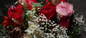 Beautiful, British Grown Flowers for Valentine's Day and Mother's Day 2017