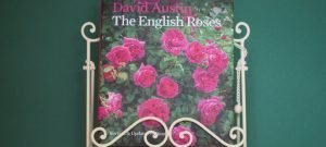 Book Review – The English Roses