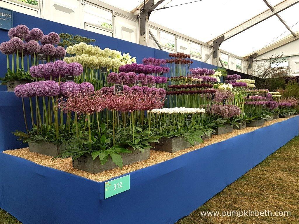 2020 Specialist Plant Fairs Festivals