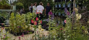 Juliet Sargeant and the RHS Kitchen Garden