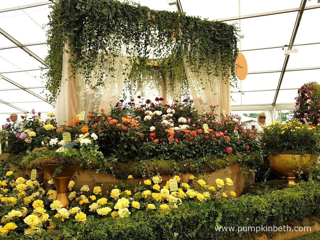 Rose of the Year at the RHS Hampton Court Palace Flower Show 2017 ...