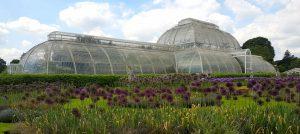 Super Surrey Spring Gardens