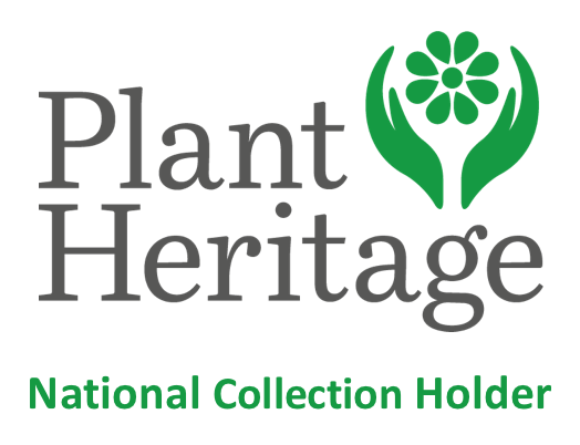NCCPG Plant Heritage National Collections Logo
