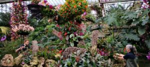 Celebrating the Colour of Colombian Orchids at Kew!