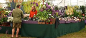 2020 Specialist Plant Fairs, Festivals, Sales, and Swaps