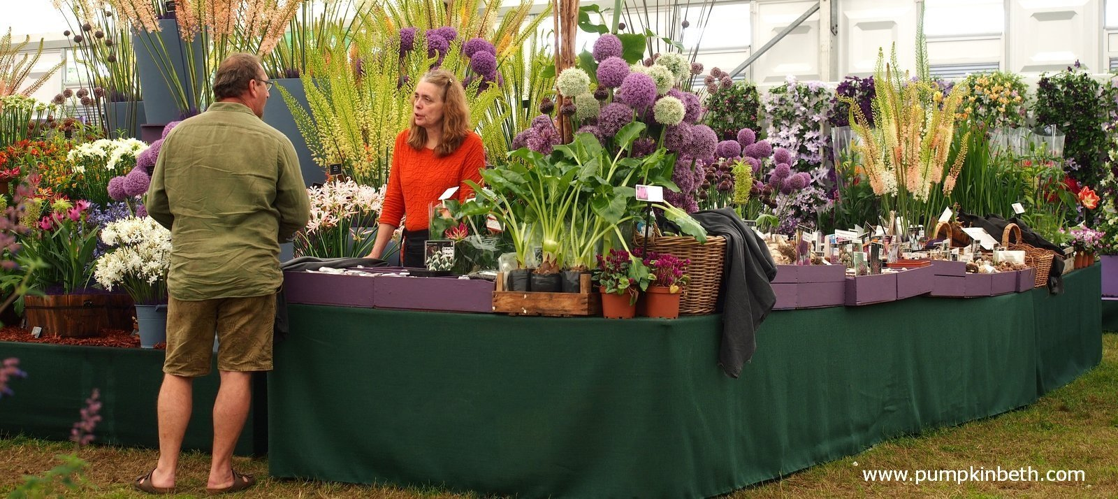 2020 Specialist Plant Fairs Festivals Sales And Swaps Pumpkin Beth