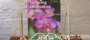 Book Review & Competition – Growing Orchids at Home