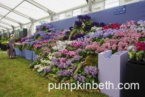2021 Specialist Plant Fairs, Festivals, Plant Sales, Plant & Seed Swaps